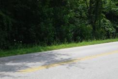 #1340 – Pickett Park Hwy