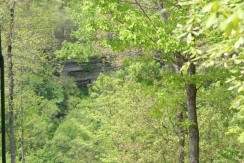#1629 – Lot #9 Eagle Bluff in The Highlands