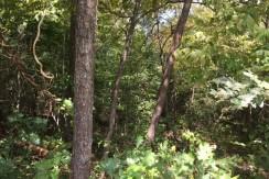 #1465 – Capps Rd.  Deer Lodge