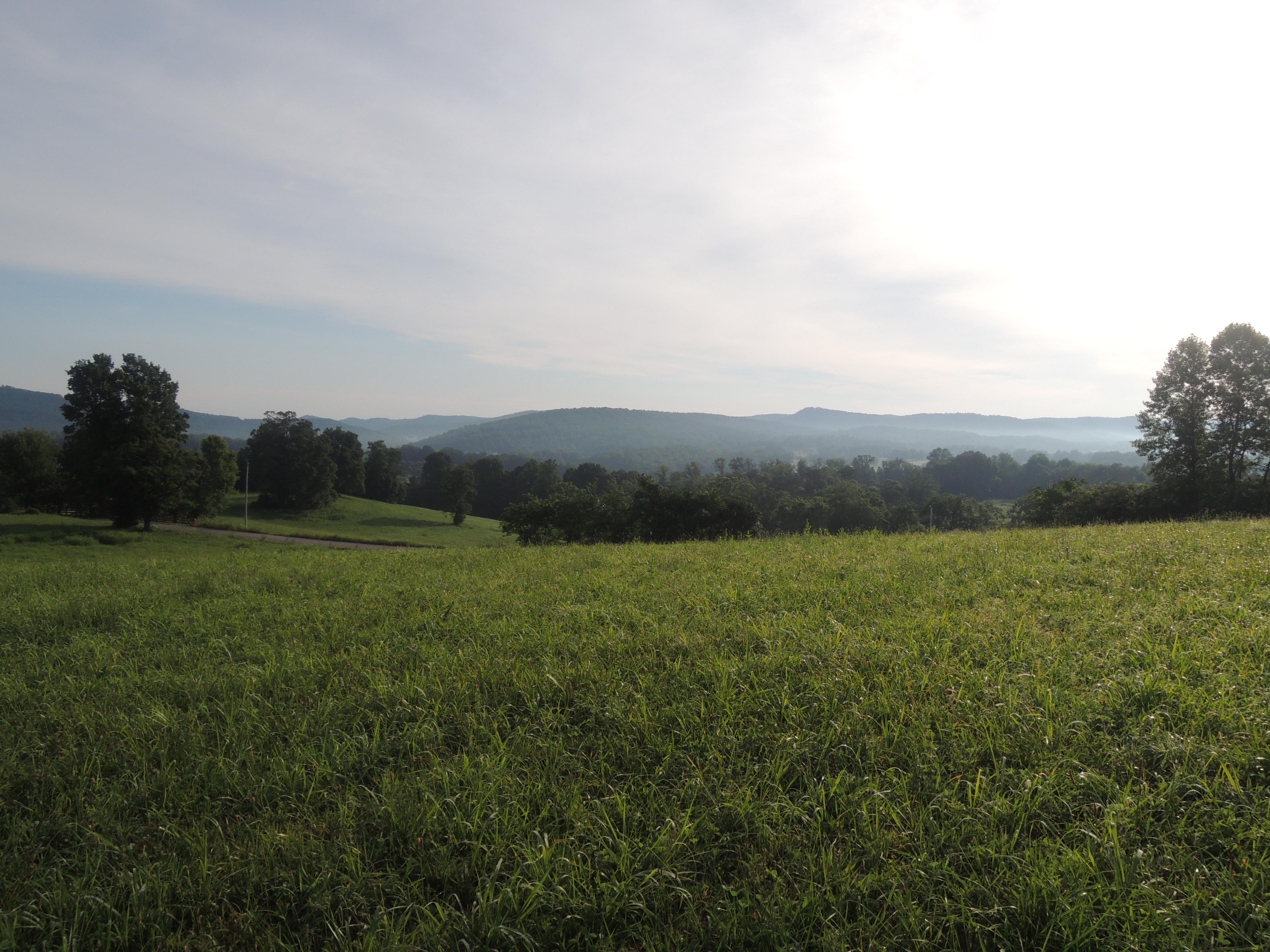 #1572 – 5451 Buck Mt. Rd.