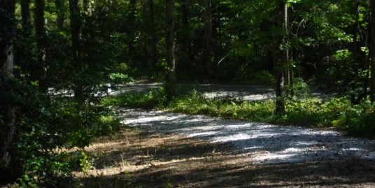 #1573 – 5296 Honey Creek Loop – Robbins