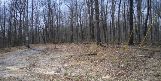 #1652 – Spruce Creek Dr. and Wildcat Rd.